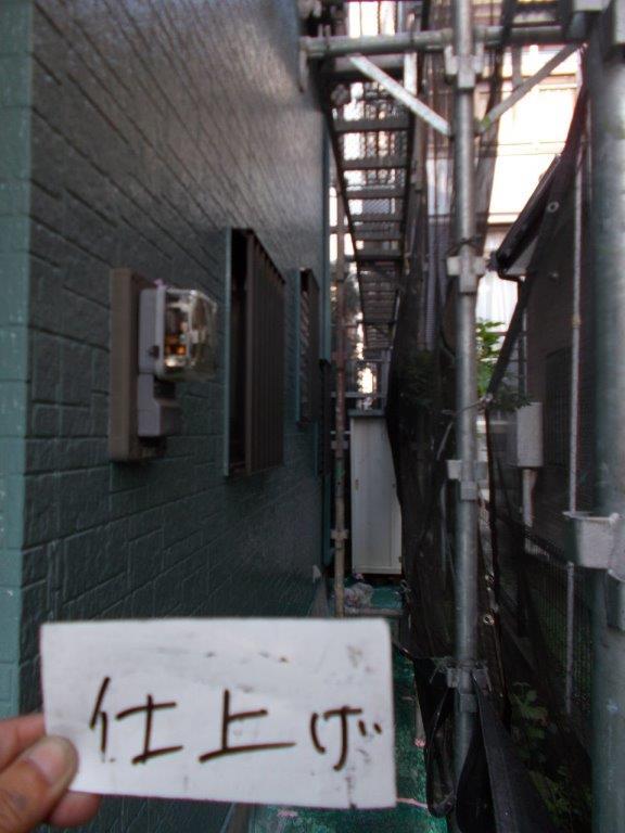 外壁の塗装工事(2色塗り分け塗装)|埼玉県さいたま市大宮区のG様邸にて塗り替えリフォーム