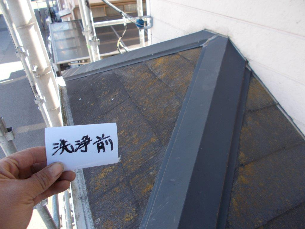 下屋根の洗浄前